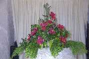Christmas flowers on the font